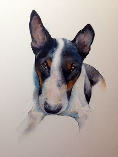 bull terrier painting in watercolour for a commission piece by artist jane davies