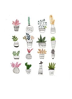 Potted plant, one of my favorite things in teh world - # Plant Illustration, Watercolor Illustration, Watercolor Art, Botanical Line Drawing, Botanical Art, Segundo Round, Flower Sketches, Floral Illustrations, Bullet Journal Inspiration