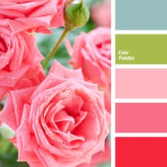 Romance and love - that's the way you can characterize this palette. Shades of pink evoke thoughts about love and the most tender feelings. These colors ca.