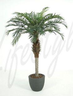 Phoenix Palm - kunstplant