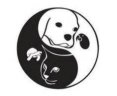 yin yang ANIMAL SKIN PATTERN - - Yahoo Image Search Results