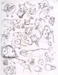 I sketched these a while ago. =] There will always be more to come! ^^ Pen and ink in my drawing book. *if I have drawn a picture of your rat please understand I am just trying to improve. I force ...