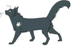 Photo of Greystripe for fans of Warrior Cats Image Service.