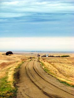 Saskatchewan country road by Lilypon_SK