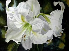 Watercolor flowers lilies white