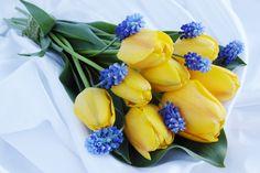 Bouquet de tulipas amarelas. Um charme!!