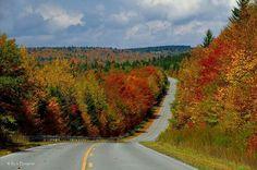 Fall Colors in WV