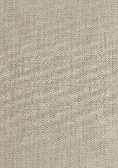 WINDSONG, Flax, W80575, Collection Oasis from Thibaut