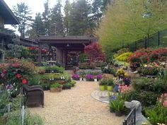 Image result for garden center displays