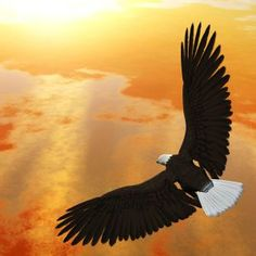 July 29__A good day to: Ascend to a larger perspective