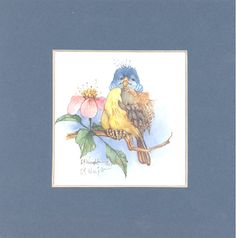 Connecticut Warbler 7 x 7 matted lithograph