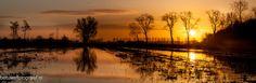 buurmalsen ( ochtendrood ) by ~Betuwefotograaf on deviantART
