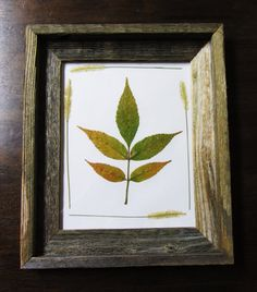 Rustic Real Pressed Leaves Frame by kate0748 on Etsy, $25.00
