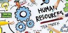 What is human resources and what does the job involve? Human Resources Jobs, Human Resource Management System, What Is Human, Hr Management, Business Management, School Application, Harvard Law, Business School, Business Goals