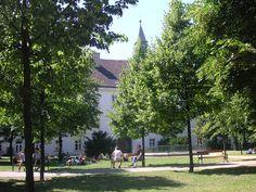 Campus of the University of Vienna University Of Vienna, International School, Sidewalk, Alone, Side Walkway, Walkway, Walkways, Pavement