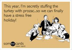 Yes--the holidays are over, but I can't wait until next Thanksgiving to pin this. It's just too funny. Happy Thanksgiving, Thanksgiving Ecards, Funny Thanksgiving Pictures, Holiday Ecards, Thanksgiving Crafts, Stress Free, Stress Relief, Holiday Stress, Holiday Fun