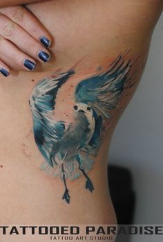 seagull watercolor by dopeindulgence.deviantart.com on @deviantART