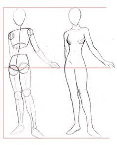 How to Draw Manga - Compare these body proportions to classical and/or fashion proportions. Recognize idea body types as subject to the aesthetic tastes or social modes of a cultural era.