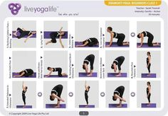 Hatha Yoga for Beginners Complete Set (Classes 1 to Yoga Poses For Back, Basic Yoga Poses, Cool Yoga Poses, Vinyasa Yoga Poses, Yoga Sequences, Yoga 1, Hatha Yoga For Beginners, Beginner Yoga, Ayurveda