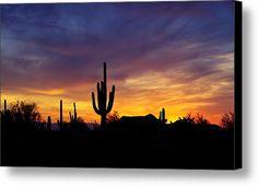 A Saguaro Sunset  Canvas Print / Canvas Art By Saija  Lehtonen
