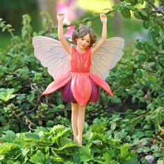 The Fuchsia Fairy