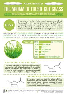 The chemicals behind the smell of fresh-cut grass. Click 'visit site' to read more & download.