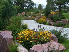 Xeriscape...I like how they used rock to fence in flowers