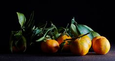 Family name: rutaceae. First name: mandarin, clementine, clemenvilla, satsume, tangerine… Know of any others?