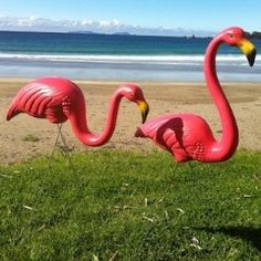 Pink Flamingos Lawn Art - Featherstone Original - Made in the USA - Outdoors - Garden and Outdoors - Home & Garden