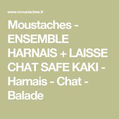 Moustaches - ENSEMBLE HARNAIS + LAISSE CHAT SAFE KAKI - Harnais - Chat - Balade