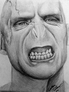 Harry Potter Sketch, Harry Potter Fan Art, Harry Potter Characters, Harry Potter Portraits, Desenhos Harry Potter, Lord Voldemort, Portrait Sketches, Mischief Managed, Disney Cartoons