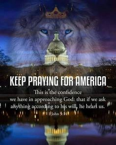 Keep praying for America. Your will be done God! Pray For America, I Love America, God Bless America, Christian Faith, Christian Quotes, Christian Pictures, Christian Prayers, Lion Of Judah, Prayer Warrior