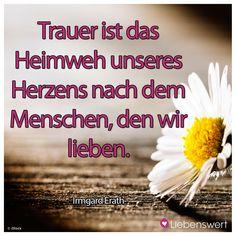 Trauer ist das Heimweh unseres Herzens nach dem Menschen, den wir lieben. -Irmgard Erath #trauer #trauerverse #kondolenz #trauersprüche