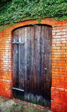 Savannah, Georgia Cool Doors, Unique Doors, Portal, Knobs And Knockers, Door Knobs, When One Door Closes, Grand Entrance, Door Wall, Garden Gates