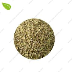 Fennel Extract CAS NO. 104-46-1 | Fennel Extract Manufacturer | Fennel Extract Supplier