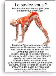 Page Produits | Amano'Hilot - Thérapeute énergétique - Magnétiseur - Massage