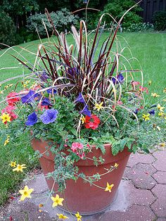 Garden in a Small Space - wikiHow