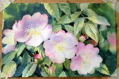 Ann's Watercolour Studio - Flower tutorials