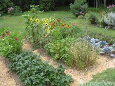 Vegetable Garden | Planning the vegetable garden