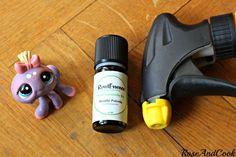 Faire fuir les araignées - Mélangez 6 gouttes d'HE de menthe dans un spray d'eau,agitez,vaporisez le contour des portes et fenêtres!