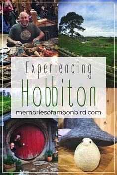 What's it like to visit Hobbiton? In all of my travels, it stands out as one of the most magnificent places I've ever seen. But why is it so magnificent? Click on over to the Memories of a Moonbird website to read all about it!  #hobbiton #hobbit #newzealand #matamata #lordoftherings #MemoriesofaMoonbird #Moonbird #TravelBetter #Travel #TravelTips #wanderlust #nature #traveltheworld #passionpassport #travelling #travelblog #traveltheworld #adventure #explore #traveller Travel Memories, What Is Like, The Hobbit, New Zealand, Travelling, Travel Tips, Wanderlust, Journey, Bird