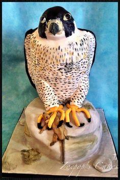 Peregrine Falcon - Cake by Zoepop