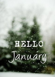 Hello there, January! 👋 The Clovis Outdoor Services, Ltd team would like to wish everyone a very Happy 🌲 Seasons Months, Days And Months, Months In A Year, New Years Eve, 12 Months, Hello January Quotes, Hello March, I Love Winter, Winter Time
