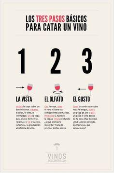 Conoce las distintas etapas de la cata del vino. Es ...