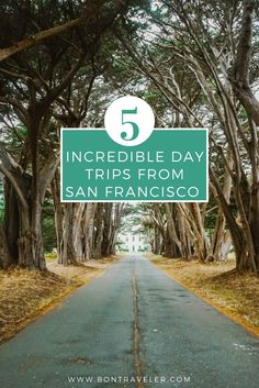 If you call San Francisco home or you are visiting, one of the best things is how many incredible day trips are nearby, be sure to checkout these five.