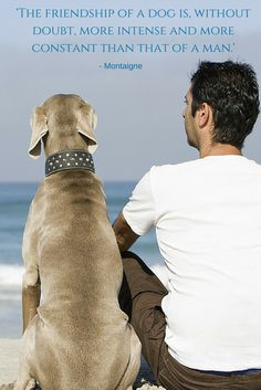 'The friendship of a dog is, without a doubt, more intense and more constant than that of a man.' - Montaigne