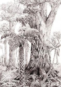 New Zealand Totara and tree ferns in pen and ink Tree Fern, Upcoming Artists, Buy Art Online, Ink Pen Drawings, Australian Artists, Watercolor Paper, Original Artwork, Prints, Trees