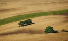 Moravia's lines. Country Roads
