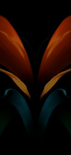 Latest Wallpapers, Best Iphone Wallpapers, High Quality Wallpapers, Nature Wallpaper, Mobile Wallpaper, Fractal Art, Fractals, Oneplus Wallpapers, Rare Photos