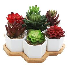 Set of 7 Hexagon Shaped Ceramic Succulent Planters, Geometric Plant Pots with Bamboo Tray